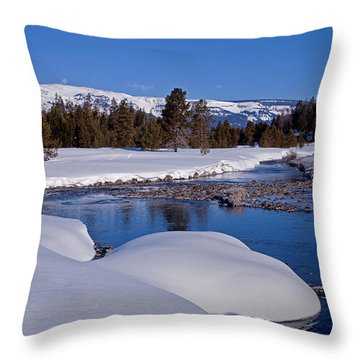 Throw Pillow featuring the photograph Otter Creek by Jack Bell