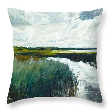 Otter Tail River From Bridge Throw Pillow