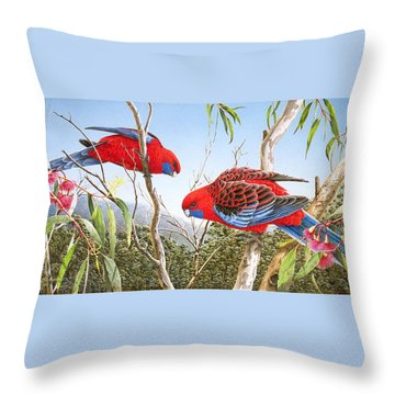 Our Beautiful Home - Crimson Rosellas Throw Pillow by Frances McMahon