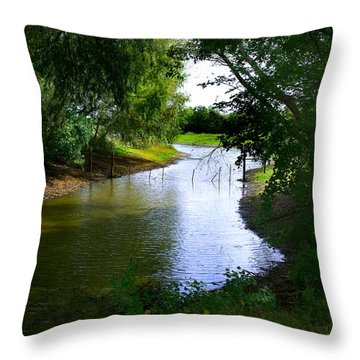 Our Fishing Hole Throw Pillow by Peter Piatt