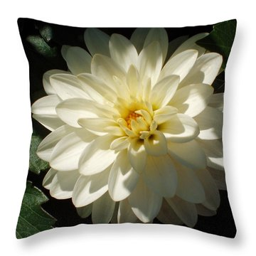 Our Hope Endures Throw Pillow by Tom Druin