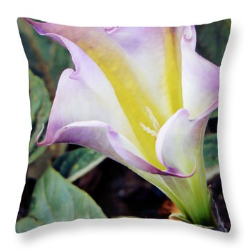 Our Lady's Little Glass Throw Pillow by Pamela Patch