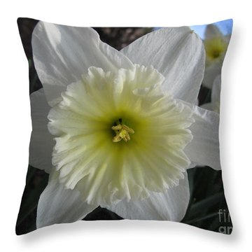 Throw Pillow featuring the photograph Out Front by Arlene Carmel