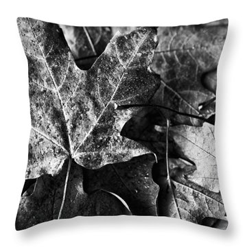 Out In The Cold Throw Pillow by Christi Kraft