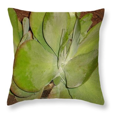 Out In The West Throw Pillow