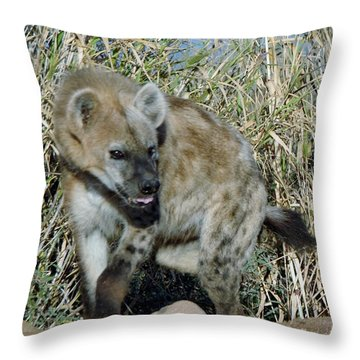 Out Of Africa  Hyena 2 Throw Pillow