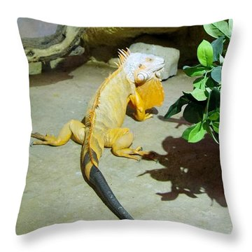Out Of Africa Orange Lizard 2  Throw Pillow