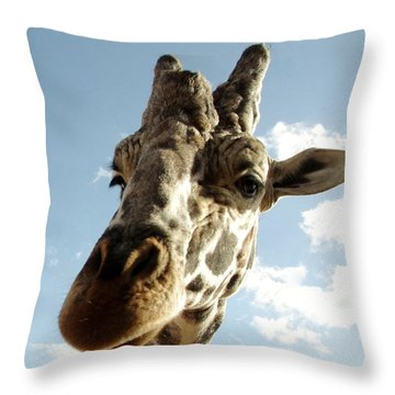 Out Of Africa  Reticulated Giraffe Throw Pillow