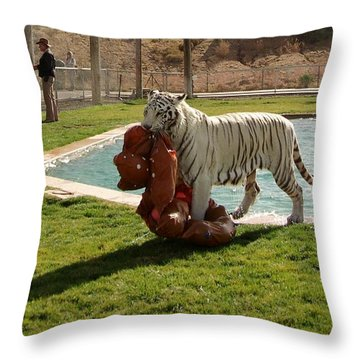 Out Of Africa Tiger Splash 2 Throw Pillow