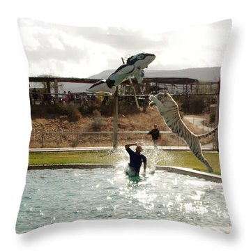 Out Of Africa  Tiger Splash 6 Throw Pillow