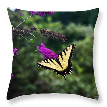 Throw Pillow featuring the photograph Out Of Bounds by Judy Wolinsky