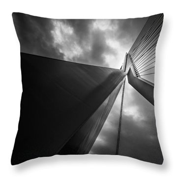 Throw Pillow featuring the photograph Out Of Chaos A New Order by Mihai Andritoiu