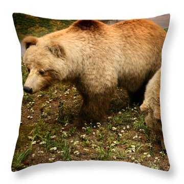 Out Of Hibernation Throw Pillow