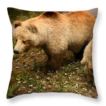Out Of Hibernation Throw Pillow