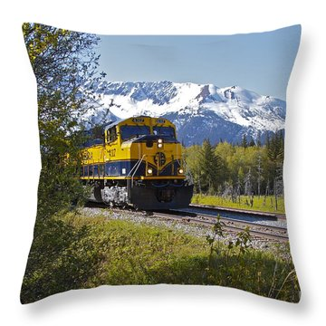 Out Of Place Throw Pillow by Rick  Monyahan