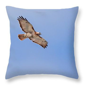 Out Of The Blue Square Throw Pillow by Bill Wakeley
