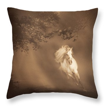 Out Of The Mist Throw Pillow