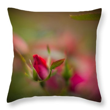 Out Of The Mist Throw Pillow by Mike Reid