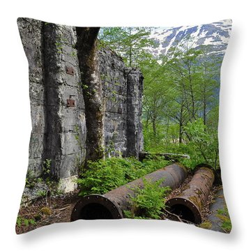 Throw Pillow featuring the photograph Out From The Past by Cathy Mahnke