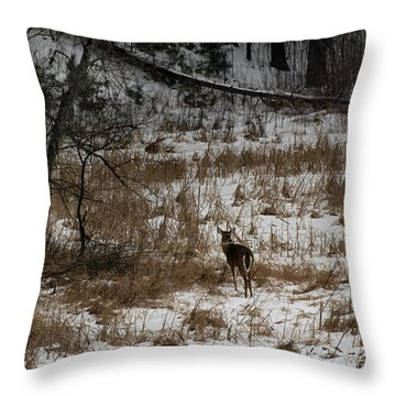 Out Of The Tangle Throw Pillow