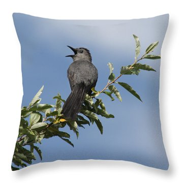 Throw Pillow featuring the photograph Out On A Limb by Anita Oakley
