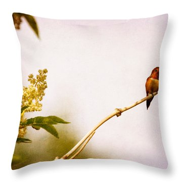 Throw Pillow featuring the photograph Out On A Limb by Peggy Collins