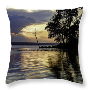 Out On Point Throw Pillow