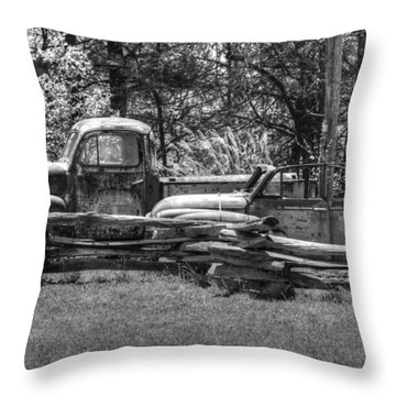Out To Pasture Throw Pillow by Michael Allen