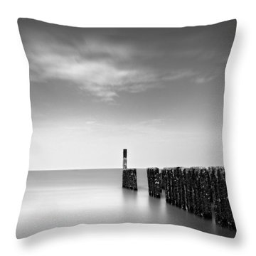 Out To Sea Throw Pillow by Dave Bowman