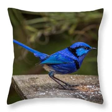Outside Diner Throw Pillow
