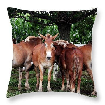Outstanding In Your Field Throw Pillow