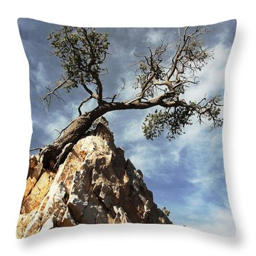 Throw Pillow featuring the photograph Hung Over by Natalie Ortiz