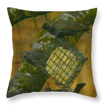 Over Lunch Throw Pillow