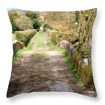 Over The River Throw Pillow by Wendy Wilton