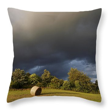 Overcast - Before Rain Throw Pillow by Michal Boubin