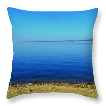 Throw Pillow featuring the photograph Overflow by Rima Biswas
