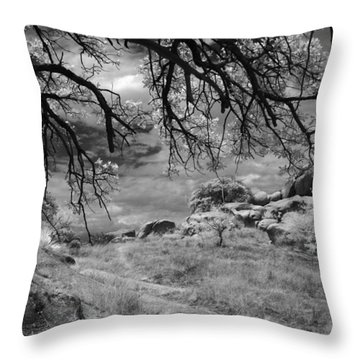 Overhanging Branches Throw Pillow by Michael McGowan