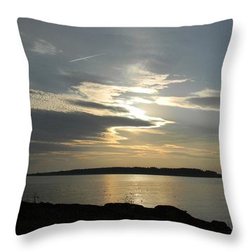 Overhead Throw Pillow by Jean Goodwin Brooks