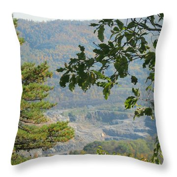 Overlooking An Old Quarry Throw Pillow by Sarah Manspile