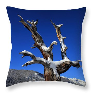 Overlooking The Valley Throw Pillow