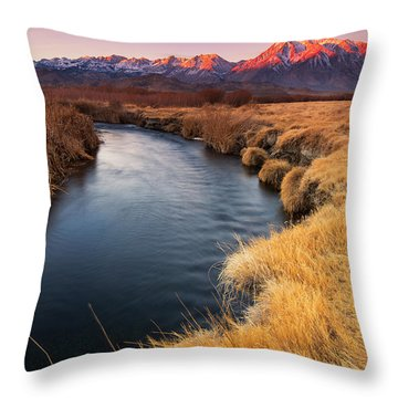 Owens River Throw Pillow