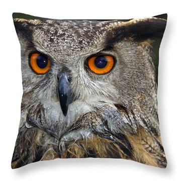 Owl Bubo Bubo Portrait Throw Pillow