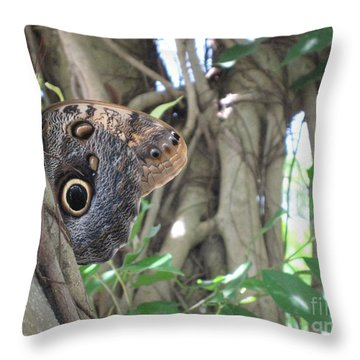 Owl Butterfly In Hiding Throw Pillow