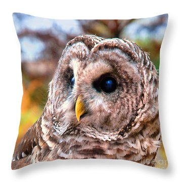 Owl Gaze Throw Pillow