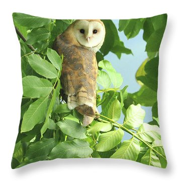 Throw Pillow featuring the photograph owl by Rod Wiens