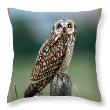Owl See You Throw Pillow by Torbjorn Swenelius