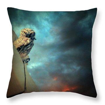 Owl Throw Pillow by Taylan Apukovska