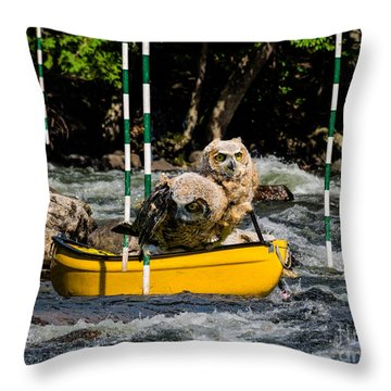 Owlets In A Canoe Throw Pillow