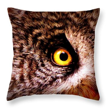Owl's Eye Throw Pillow