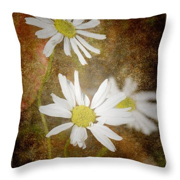 Ox Eye Dasies Throw Pillow
